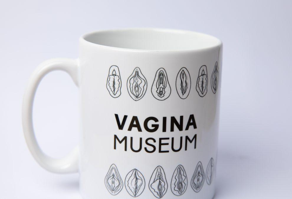 世界第一間「陰道博物館」在英國 打破女性私處迷思   DQ 地球圖輯隊